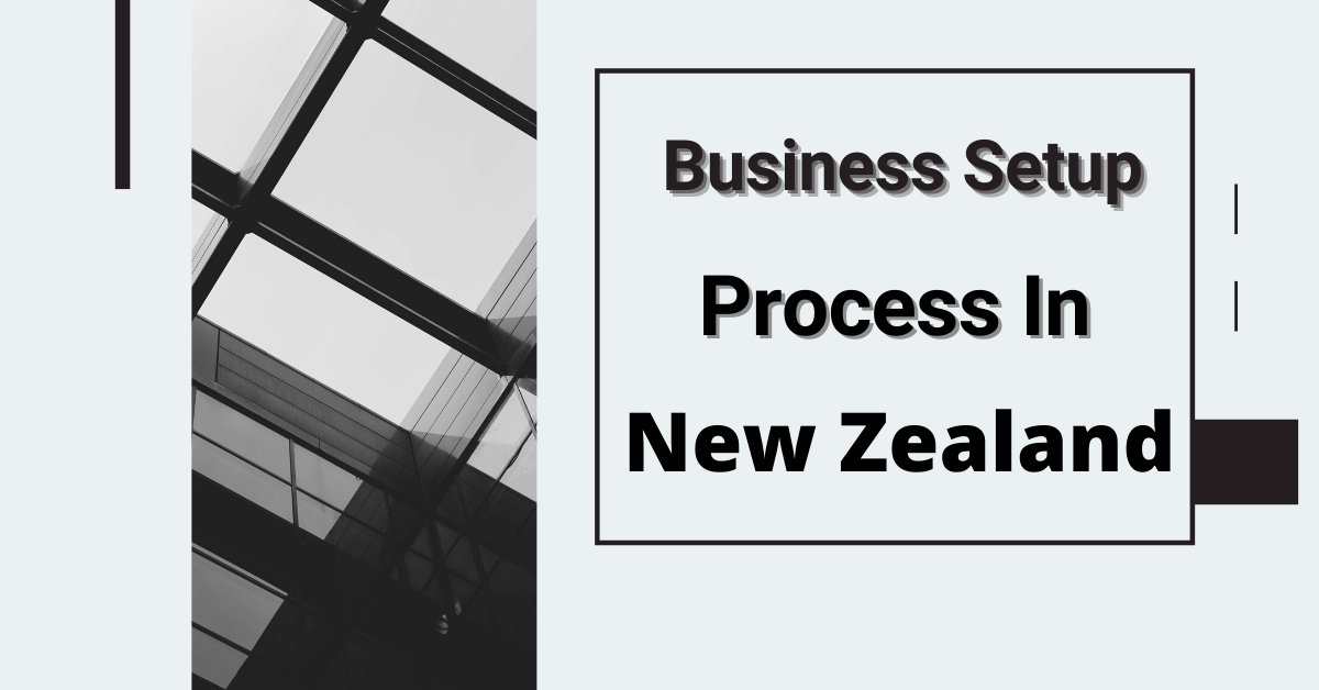 Business Setup Process in New Zealand