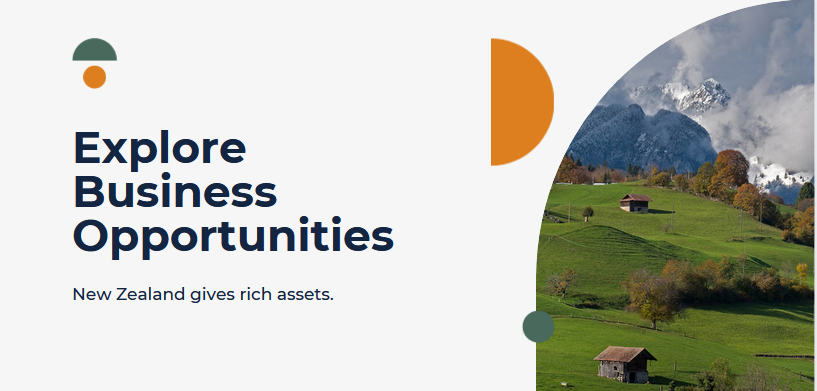 Business Opportunity in New Zealanad