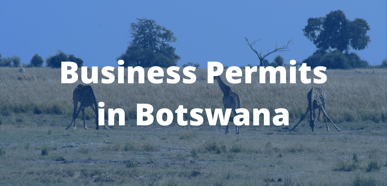 Business Permits in Botswana