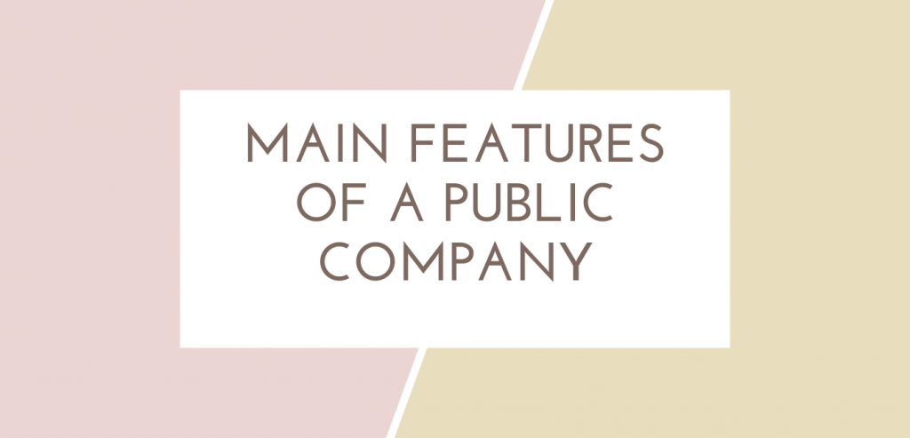 main features of a public company